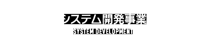 システム開発事業